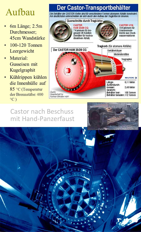 Nagra_Brennstab_Behaelter_Castor_GNS_Deutschland_Ing_Goebel.jpg